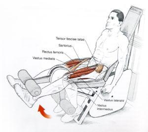 wyprost nóg na maszynie, ćwiczenia wzmacniające dla biegaczy